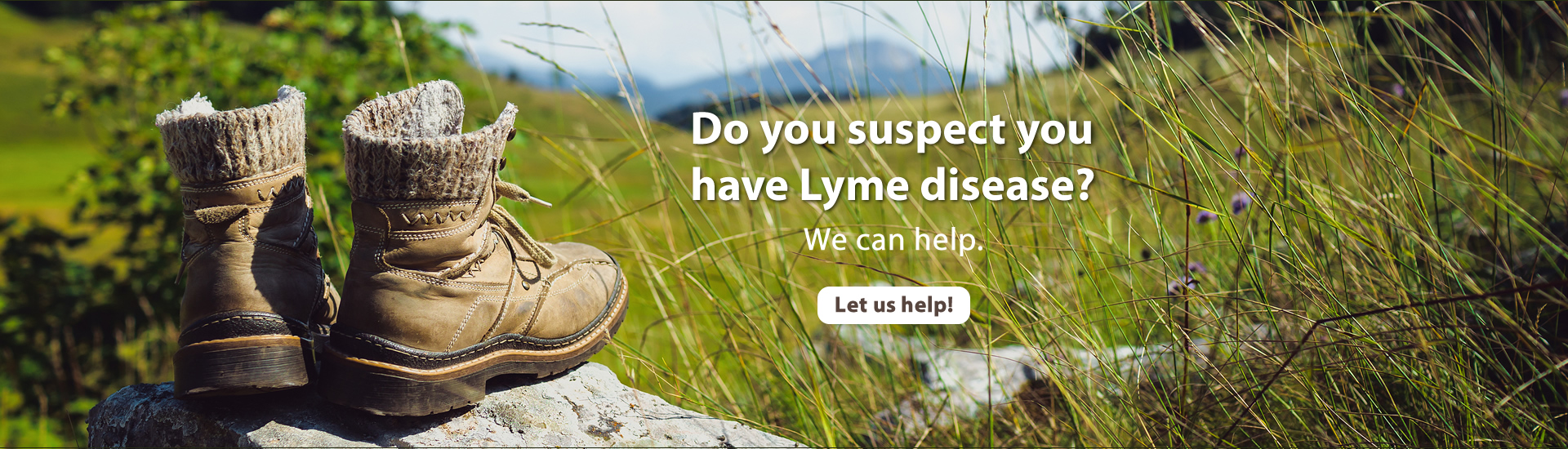 Lyme DIsease - Townsend Naturopathic Clinic Burlington